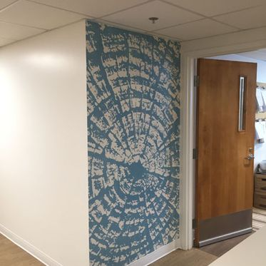 Wall Graphics Examples
