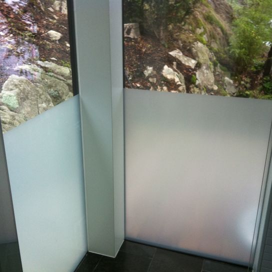 windows with installed films